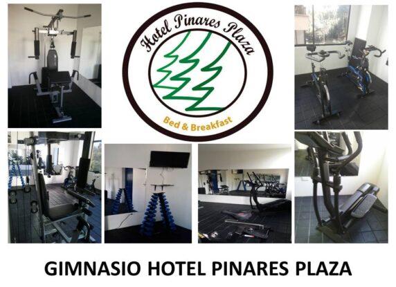 GIMNASIO HOTEL PINARES PLAZA imagen